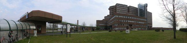 Bilancio delle attività all'ospedale San Bassiano