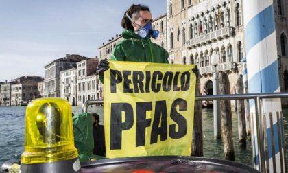 Processo, inchieste e lotta all'inquinamento: nasce il sito Processopfas.it
