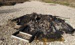 Rogo di rifiuti nel letto del Timonchio a Marano