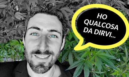 Cannabis #senzacensura, perchè mettere fuorilegge una pianta spontanea?