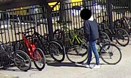 Trovato il ladro di biciclette
