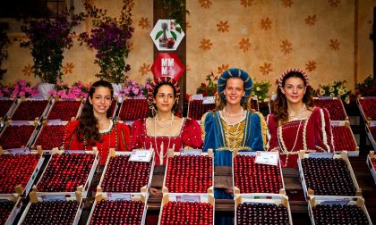Festa della ciliegia, confermato il programma