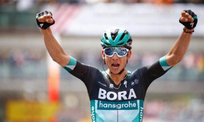 Ciclismo, Campionato Italiano 2019: braccia al cielo per Davide Formolo