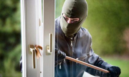 Sorpreso in casa mentre cerca di mettere in atto un furto