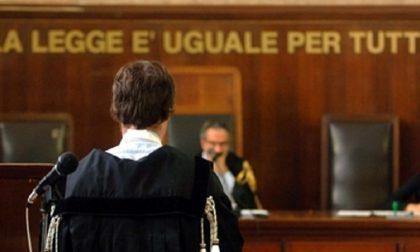 Cagnolino muore: veterinaria a processo dopo la denuncia della padrona