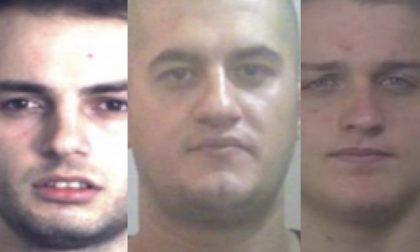 I Carabinieri di Bassano arrestano la banda di albanesi a Milano