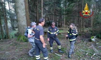 Asiago: si perdono nel bosco e finiscono nei luoghi devastati da Vaia