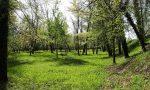 L'Oasi che rifiorisce: a Nove fra natura, verde e tanti eventi
