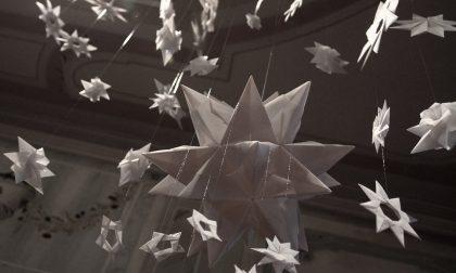 Paola Baggio che ha fatto dell'origami la sua forma di vita