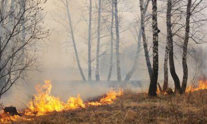 Incendi dolosi: indagini a buon punto, è caccia al piromane