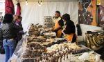 Arriva CioccolandoVi: Vicenza si trasforma nella città più dolce del Veneto