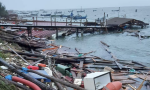 """Porto Tolle, Zaia: """"La devastazione è drammatica"""""""