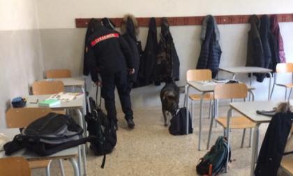 Partiti i controlli antidroga nelle aule scolastiche
