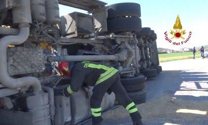 Si rovescia in una rotatoria camion carico di mangime