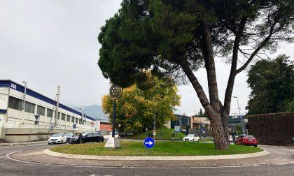 Rotatoria di Porta Venezia a Schio, lavori in notturna per il rifacimento del manto stradale