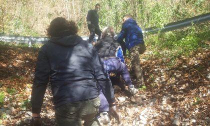 A Valdagno i cittadini si organizzano e ripuliscono i boschi: in due weekend raccolti diversi chili di rifiuti