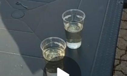 """""""Thiene, bar aperto se beve!"""", video sui social incastra il gestore: sanzione e chiusura"""