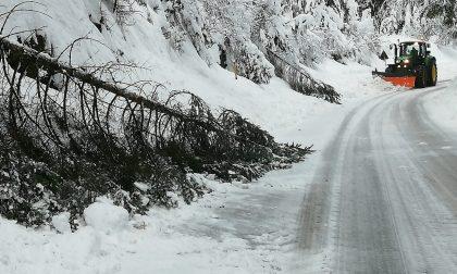 """Emergenza neve, situazione più critica a Roana. Zaia: """"Pronto lo stato di crisi"""" – GALLERY"""