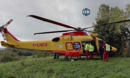 Ciclista travolto dalla caduta di un albero finisce all'ospedale