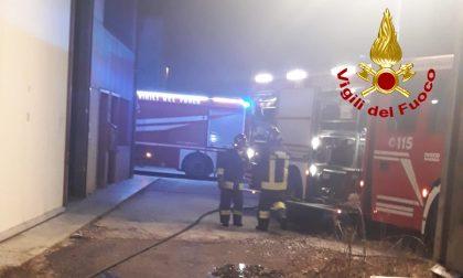 Bancali di legno in fiamme fuori dall'azienda: incendio domato dai Vigili del fuoco