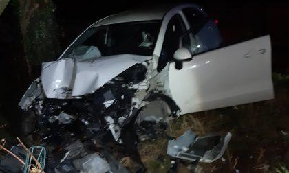 Perde il controllo dell'auto e si schianta contro un albero, era ubriaco: patente ritirata
