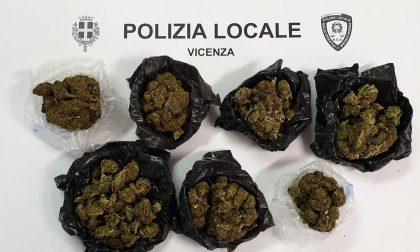 """Campo Marzo, scoperto un """"base point"""": c'era un etto di marijuana che avrebbe fruttato 1.600 euro"""