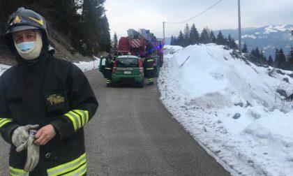 Abete cade sui cavi elettrici a Enego, intervengono i Vigili del fuoco