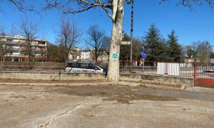 Eliminati gli avvallamenti causati dalle radici nel cortile della scuola Scamozzi