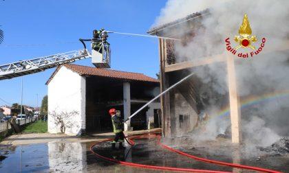 Le incredibili immagini dei Vigili del fuoco in azione in un'azienda agricola