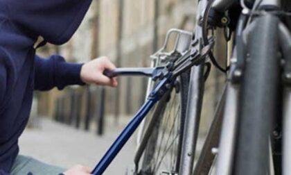 19 biciclette elettriche rubate, nei guai un cittadino moldavo