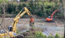 Al via la pulizia dell'alveo del torrente Leogra