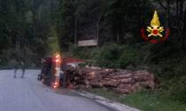 Cerca di evitare un cervo sulla provinciale: camion carico di legname si rovescia