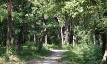 Vicenza, ripulito parco Astichello da 300 chili di rifiuti