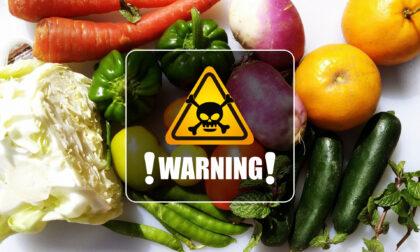 Pfas (e non solo): accertate contaminazioni nelle coltivazioni e negli animali allevati