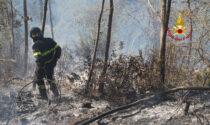 Due ettari di bosco in fiamme, foto e video dell'incendio a Pianezze di Arcugnano