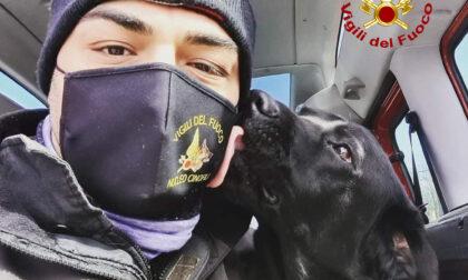 Vicenza, le immagini di Tyson primo vigile del fuoco a quattro zampe